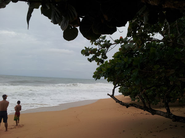 playa-bluff-bocas3